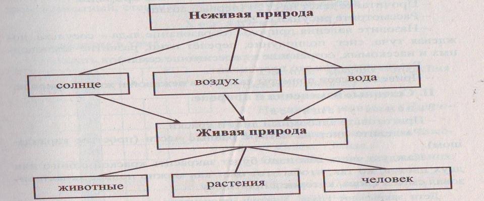 Image0027