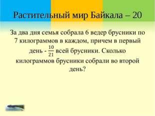 Растительный мир Байкала – 20
