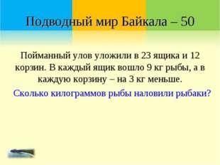 Подводный мир Байкала – 50 Пойманный улов уложили в 23 ящика и 12 корзин. В к