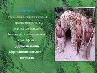 Пигме́и (греч. «люди величиной с кулак») — группа низкорослых негроидных н
