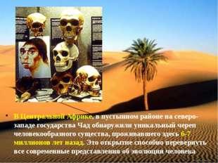 В Центральной Африке, в пустынном районе на северо-западе государства Чад обн