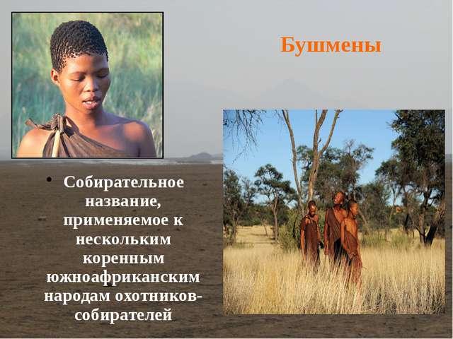 Собирательное название, применяемое к нескольким коренным южноафриканским нар...