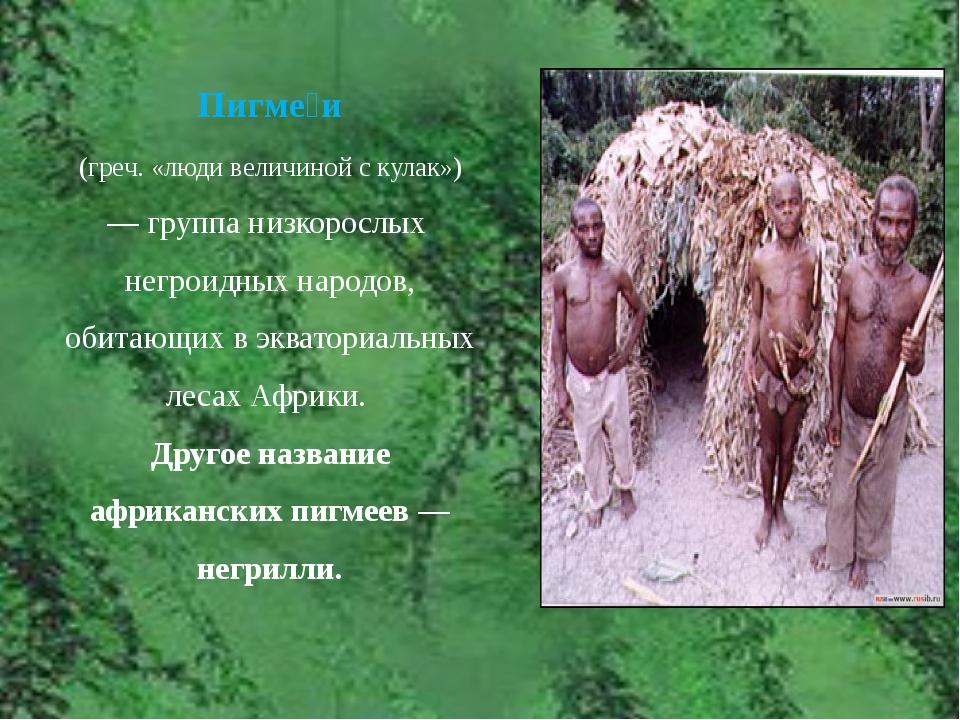 Пигме́и (греч. «люди величиной с кулак») — группа низкорослых негроидных н...