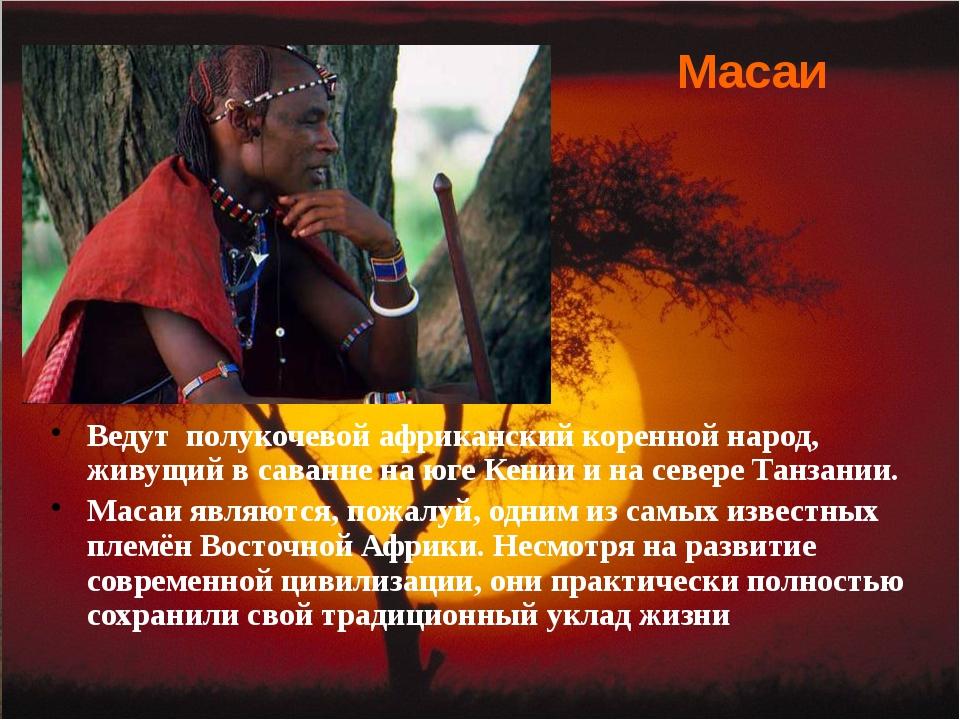Ведут полукочевой африканский коренной народ, живущий в саванне на юге Кении...