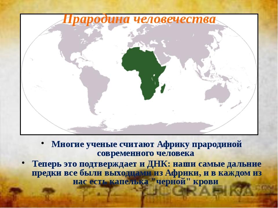 Многие ученые считают Африку прародиной современного человека Теперь это подт...