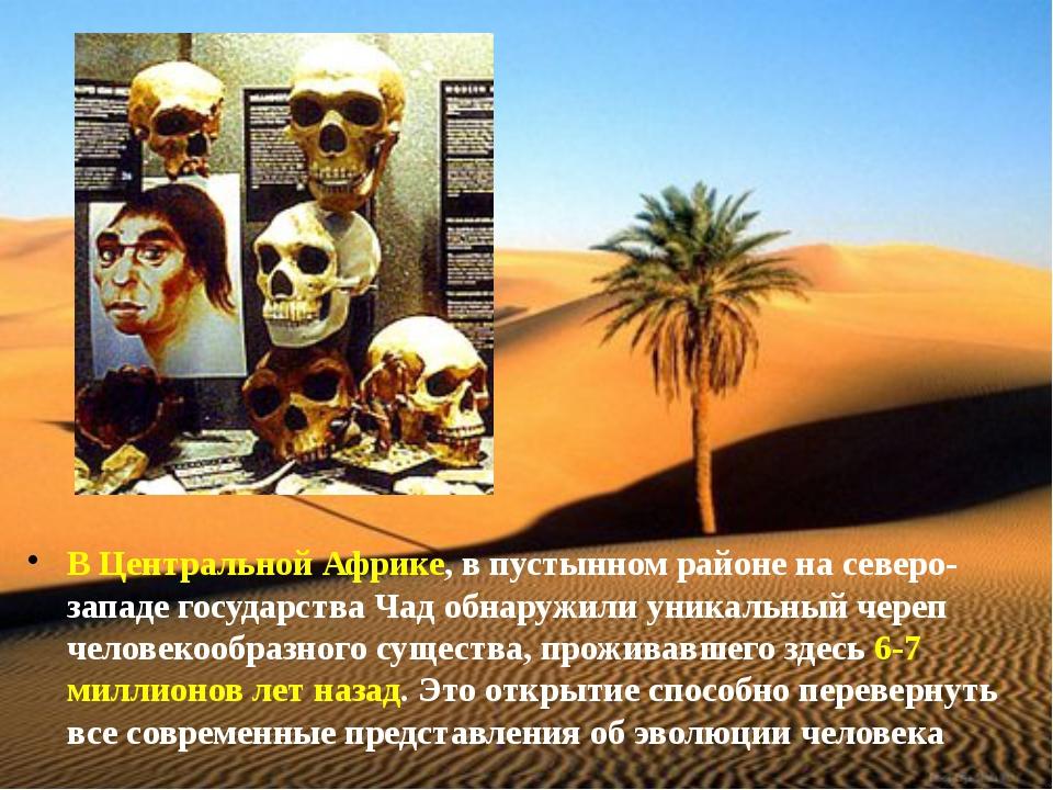 В Центральной Африке, в пустынном районе на северо-западе государства Чад обн...