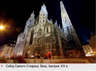 Собор Святого Стефана. Вена, Австрия. XIV в