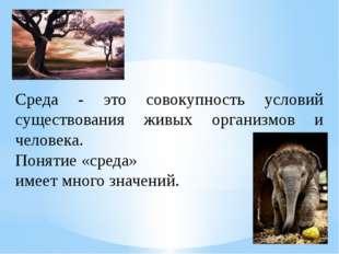 Среда - это совокупность условий существования живых организмов и человека.