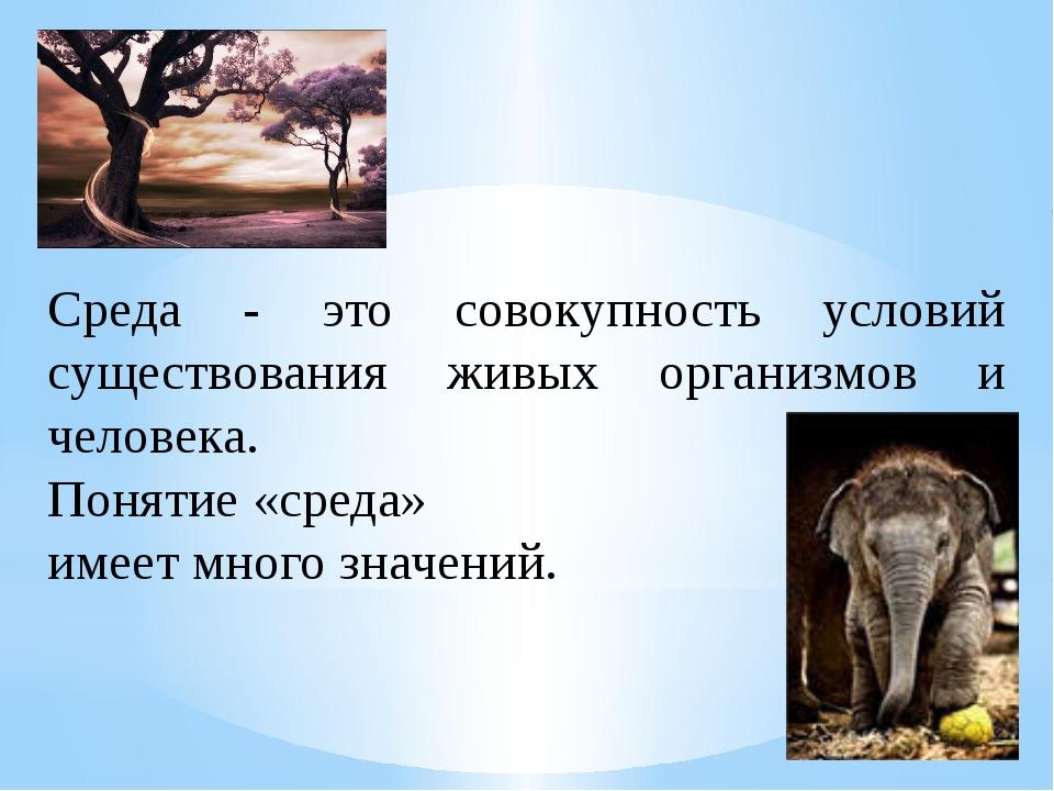 Среда - это совокупность условий существования живых организмов и человека....