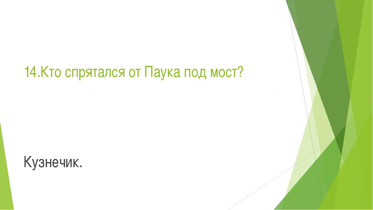 14.Кто спрятался от Паука под мост? Кузнечик.