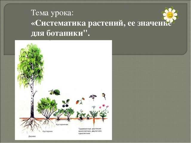 """Тема урока: «Систематика растений, ее значение для ботаники""""."""