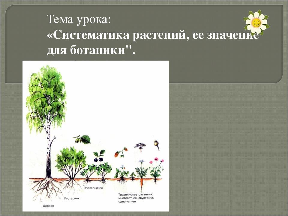 Систематика растений ее значение для ботаники доклад 2453
