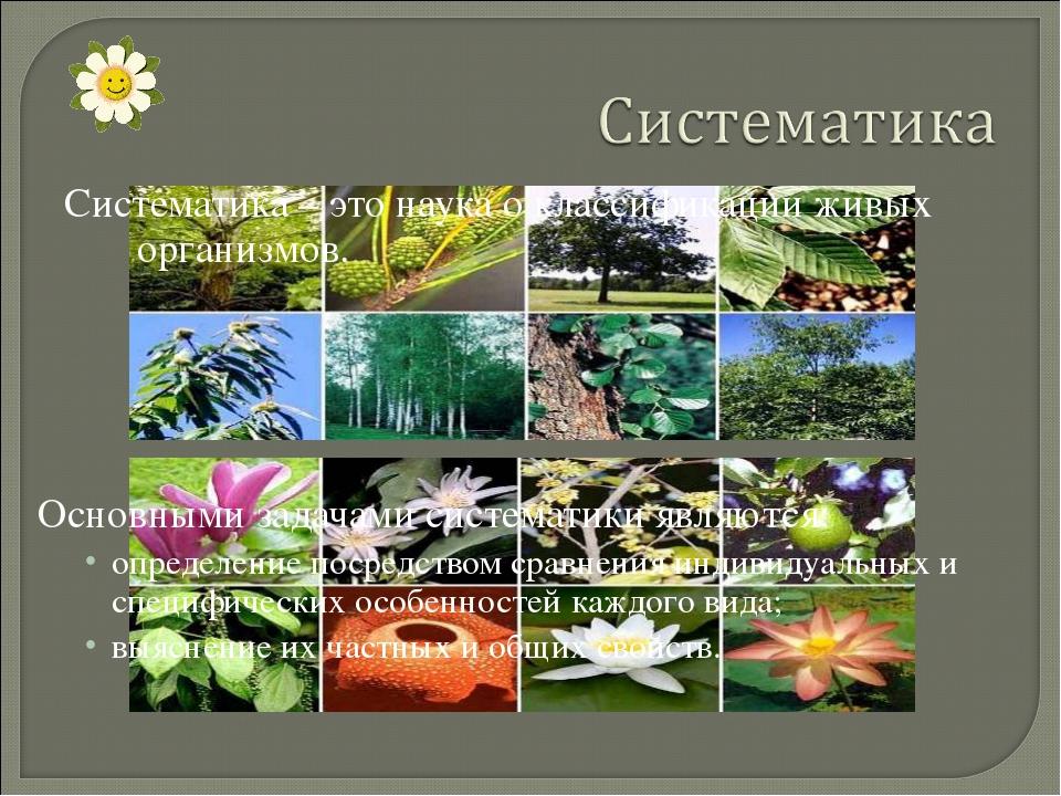 Систематика – это наука о классификации живых организмов. Основными задачами...
