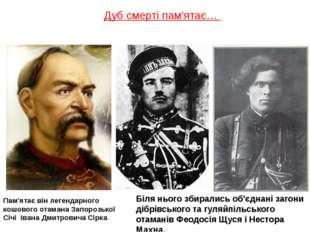 Дуб смерті пам′ятає… Пам'ятає він легендарного кошового отамана Запорозької С