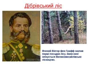 Дібрівський ліс Вчений Віктор фон Графф заклав перші посадки лісу, яким нині