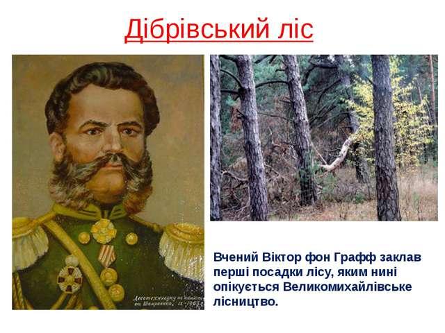 Дібрівський ліс Вчений Віктор фон Графф заклав перші посадки лісу, яким нині...