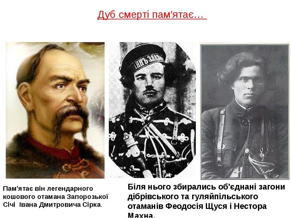 Дуб смерті пам′ятає… Пам'ятає він легендарного кошового отамана Запорозької С...