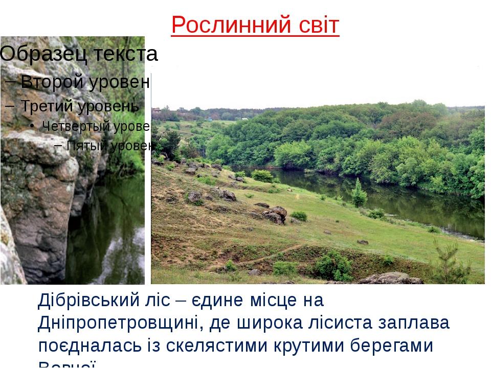 Рослинний світ Дібрівський ліс – єдине місце на Дніпропетровщині, де широка л...