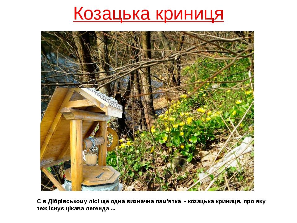 Козацька криниця Є в Дібрівському лісі ще одна визначна пам'ятка - козацька к...