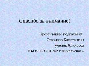Спасибо за внимание! Презентацию подготовил Стариков Константин ученик 6а кла