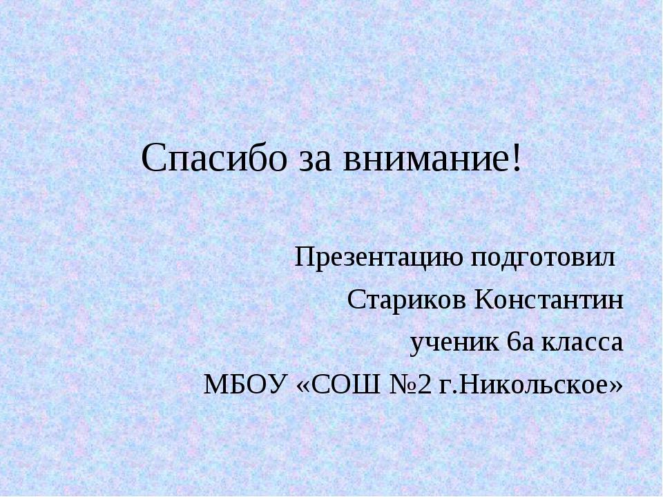 Спасибо за внимание! Презентацию подготовил Стариков Константин ученик 6а кла...