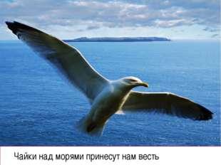 Чайки над морями принесут нам весть