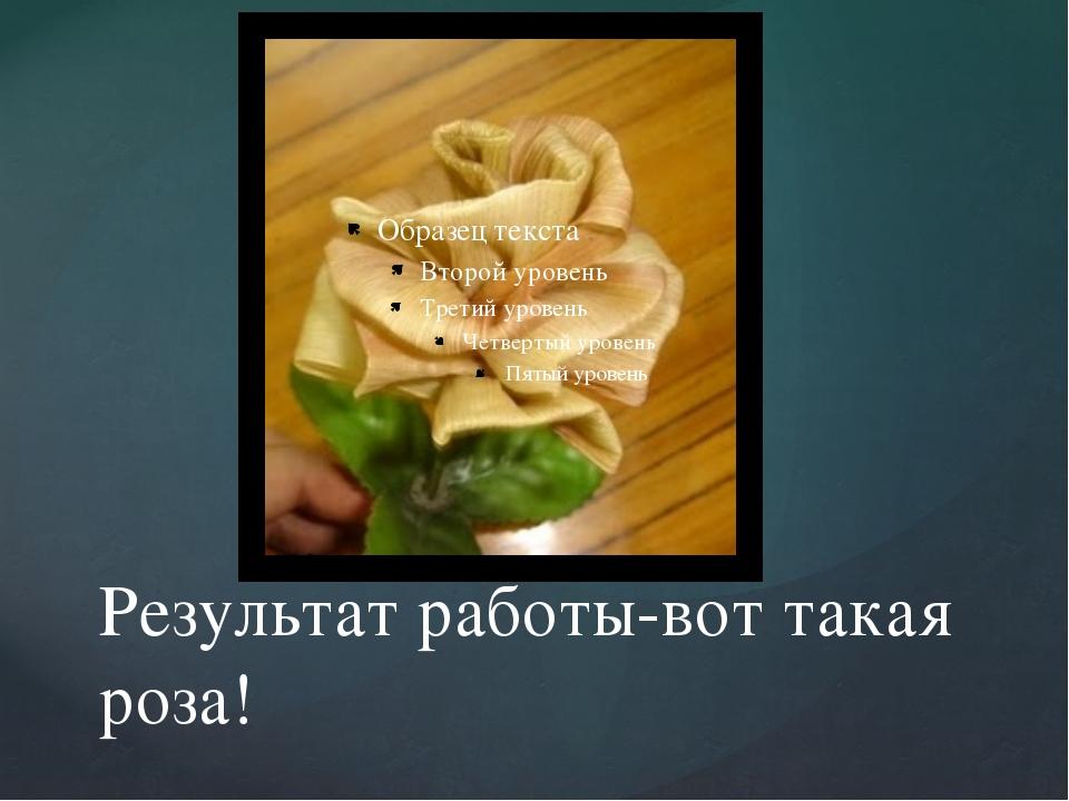 Результат работы-вот такая роза!