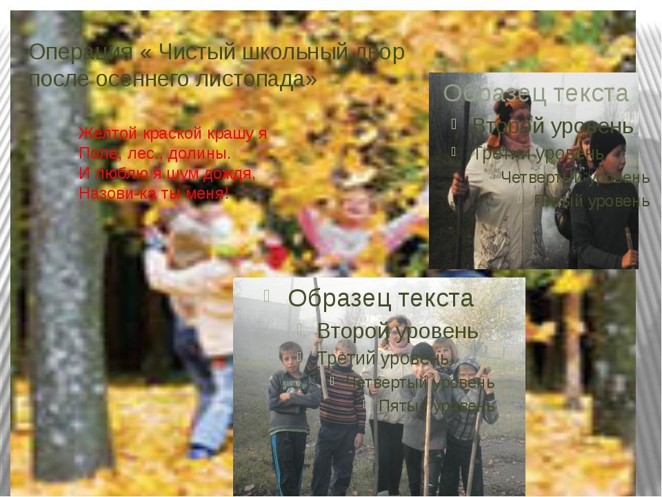 Операция « Чистый школьный двор после осеннего листопада» Желтой краской краш...