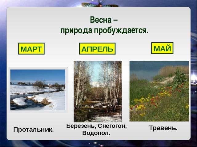 Весна – природа пробуждается. МАРТ АПРЕЛЬ МАЙ Протальник. Березень, Снегогон,...