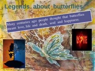 Legends about butterflies. Many centuries ago people thought that butterflies