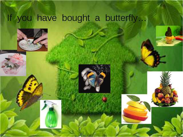 If you have bought a butterfly…