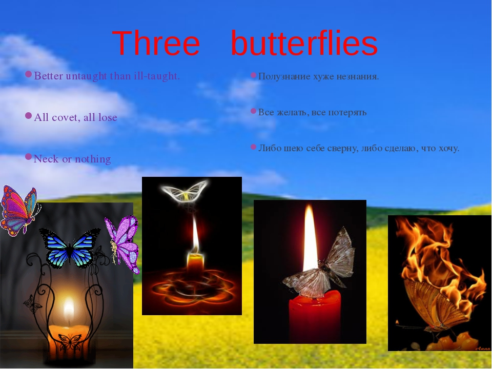 Three butterflies Better untaught than ill-taught. All covet, all lose Neck o...