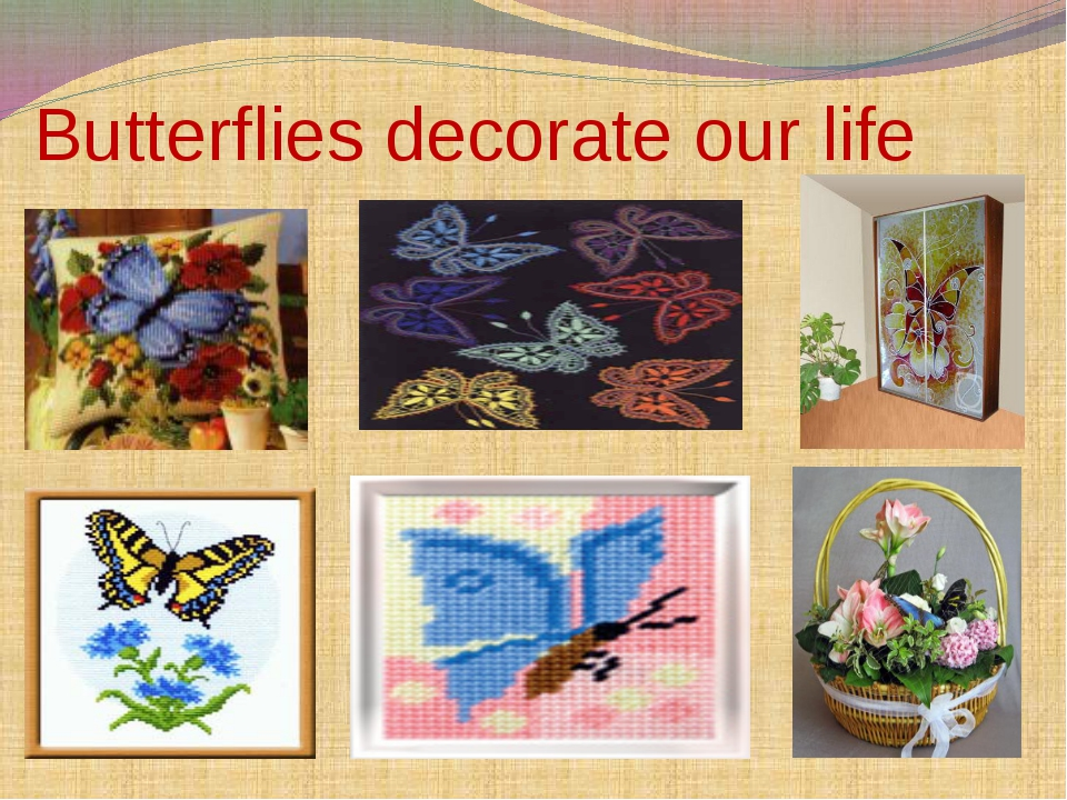 Butterflies decorate our life