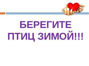 БЕРЕГИТЕ ПТИЦ ЗИМОЙ!!!