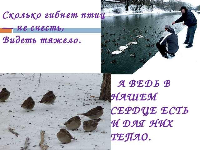 Сколько гибнет птиц— не счесть, Видеть тяжело. А ВЕДЬ В НАШЕМ СЕРДЦЕ ЕСТЬ И Д...