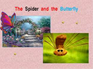 The Spider and the Butterfly