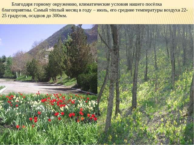 Благодаря горному окружению, климатические условия нашего посёлка благоприятн...