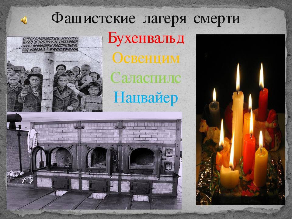 Фашистские лагеря смерти Бухенвальд Освенцим Саласпилс Нацвайер