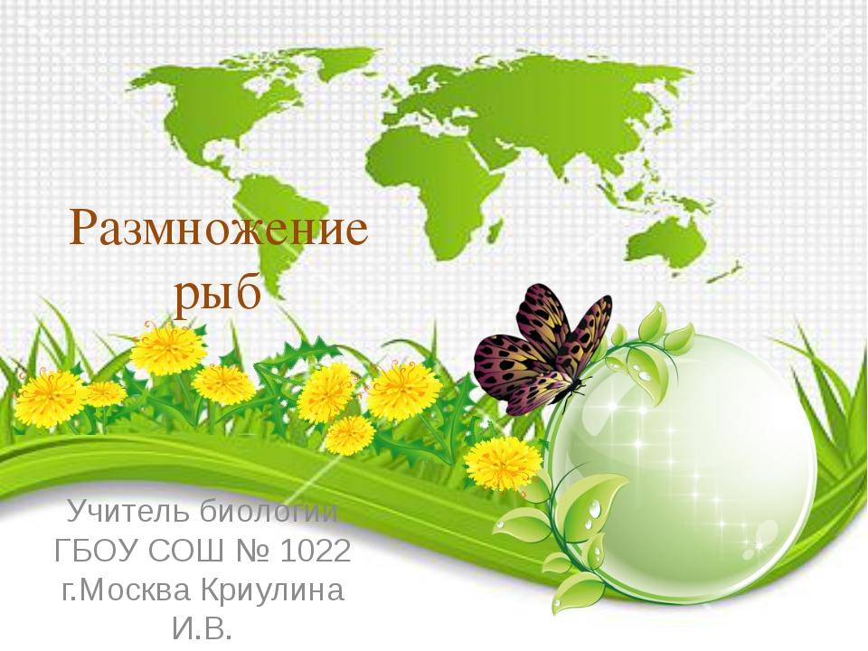 Размножение рыб Учитель биологии ГБОУ СОШ № 1022 г.Москва Криулина И.В.