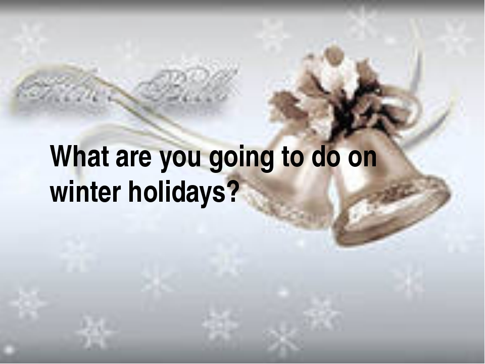 What are you going to do on winter holidays?