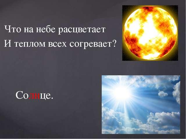 Что на небе расцветает И теплом всех согревает? Солнце.