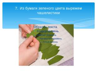 7.Из бумаги зеленого цвета вырежем чашелистики