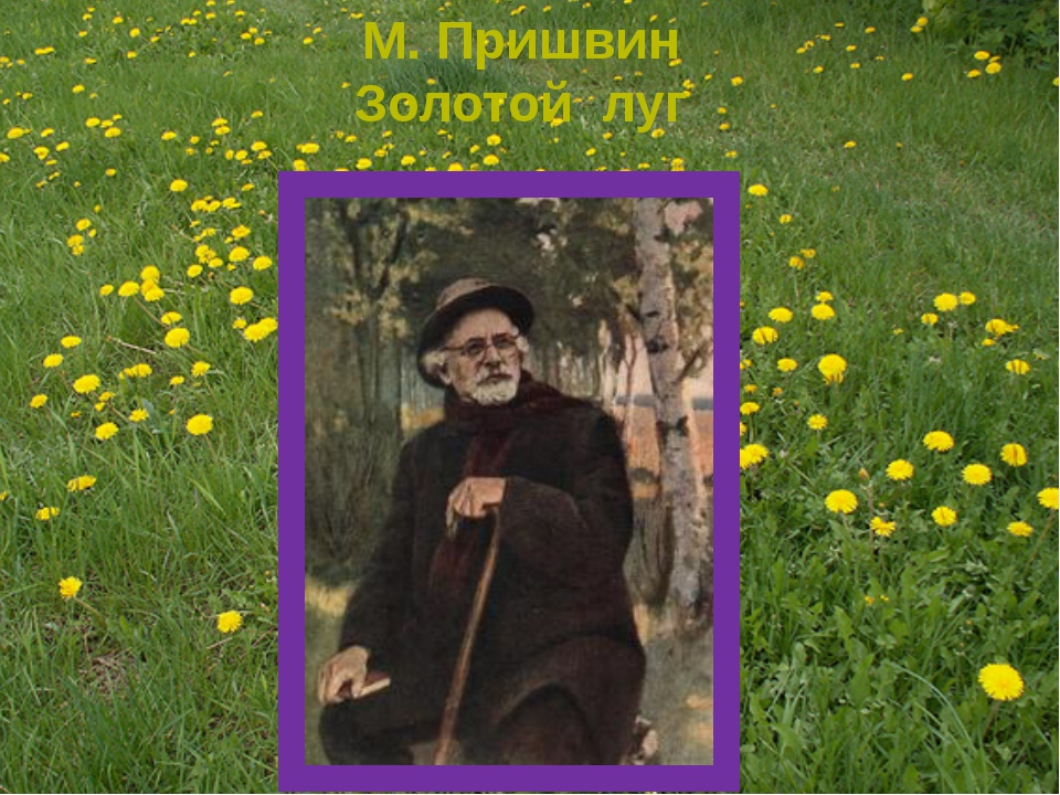 М. Пришвин Золотой луг