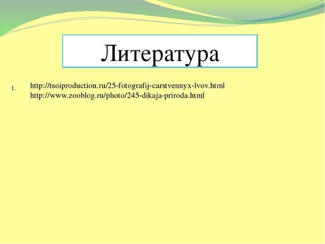 1. Литература http://tsoiproduction.ru/25-fotografij-carstvennyx-lvov.html ht...