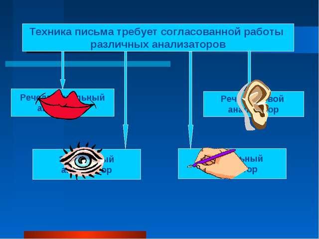 Техника письма требует согласованной работы различных анализаторов Речедвигат...