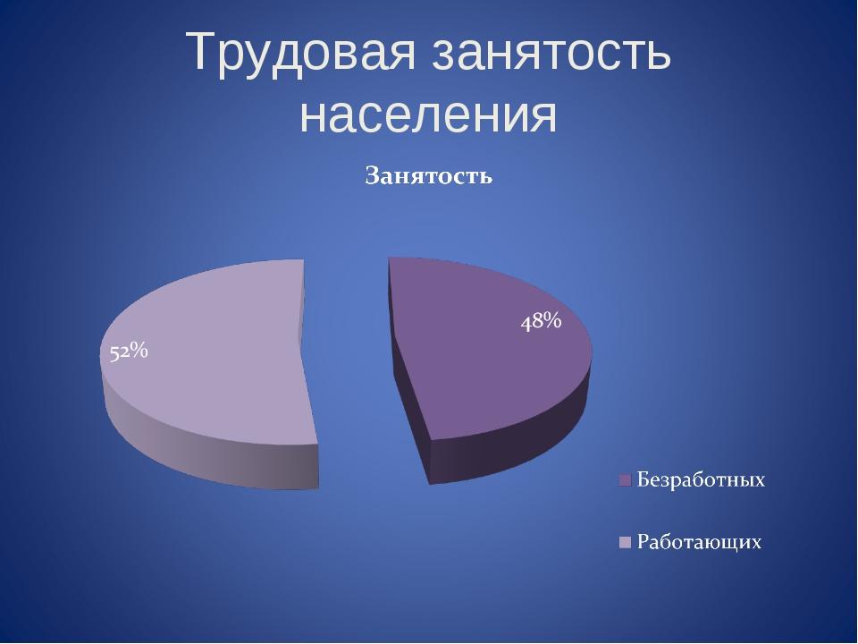 Трудовая занятость населения