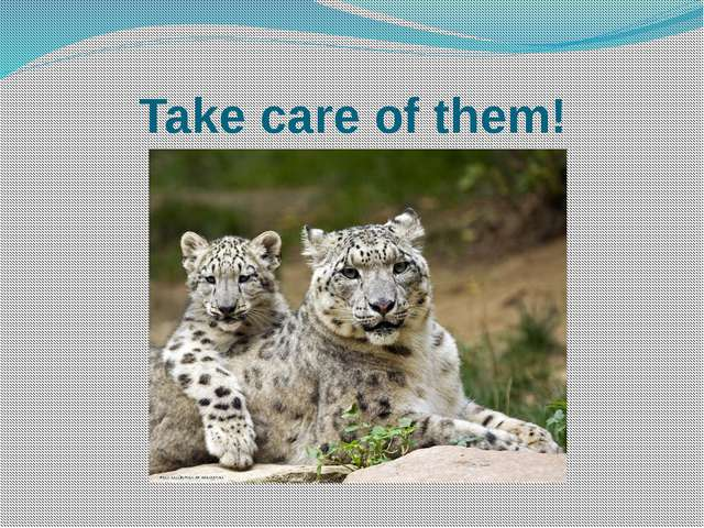 Take care of them!