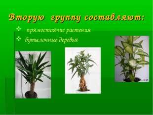 Вторую группу составляют: прямостоячие растения бутылочные деревья