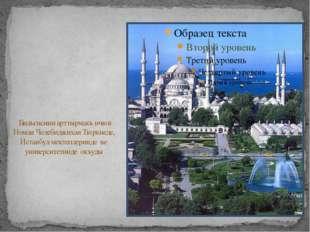 Бильгисини арттырмакъ ичюн Номан Челебиджихан Тюркиеде, Истанбул мектеплерин