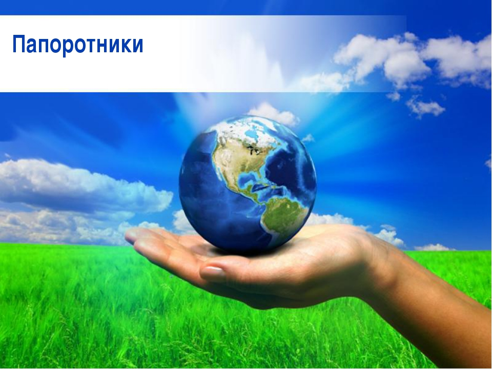 Free Powerpoint Templates Папоротники Free Powerpoint Templates Page *
